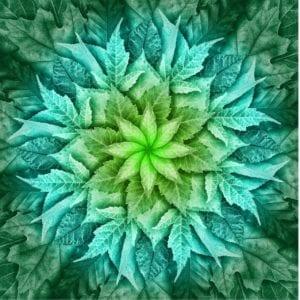 Leaf Mint panel only